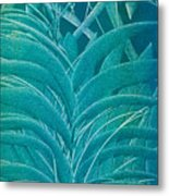 Blue Sago Metal Print