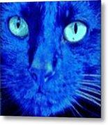 Blue Shadows Metal Print