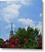 Blue Sky And Roses Metal Print