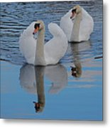 Blue Sky And Two Swans Metal Print
