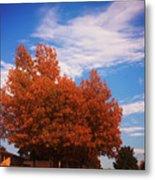 Blue Sky Autumn Metal Print