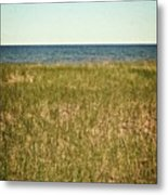 Blue Sky Green Grass Metal Print
