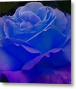 Blue Softness Metal Print