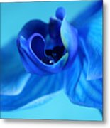Blue Solitude Metal Print