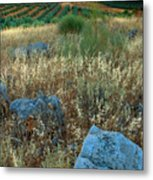 blue stones amongst the olive groves near Iznajar Andalucia Spain Metal Print