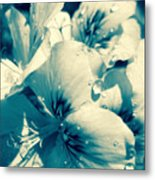 Blue Summer Flower Metal Print