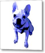 Blue Terrier Metal Print