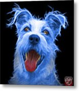 Blue Terrier Mix 2989 - Bb Metal Print