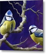 Blue Titmouse Metal Print