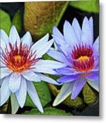Blue Water Lilies Metal Print