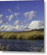 Blue Waters Of The Marsh Metal Print