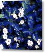 Blue White I Metal Print