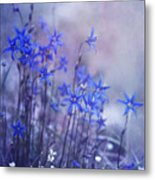 Bluebell Heaven Metal Print by Priska Wettstein
