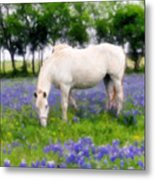 Bluebell Lunch Metal Print