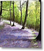 Bluebell Wood Metal Print
