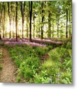 Bluebell Woods With Birds Flocking  Metal Print