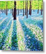 Bluebells In The Woodlands Metal Print
