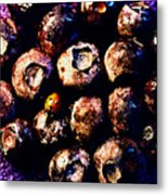 Blueberries And Ladybug Metal Print