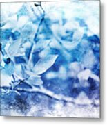 Blueberry Blues Metal Print