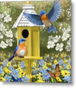 Bluebird Garden Home Metal Print