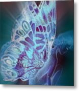 Bluefly Metal Print