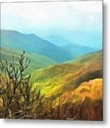 Blueridge - Spring Metal Print