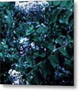 Blues And Greens Metal Print