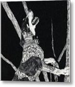 Bluetick Coonhound Metal Print
