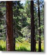 Bluff Lake Ca Through The Trees 7 Metal Print