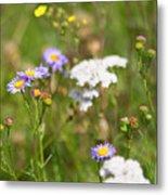 Bluff Lake Ca Wild Flowers 6 Metal Print