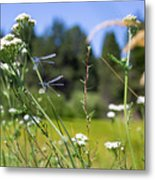 Bluff Lake Wild Flowers 2 Metal Print