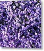 Bluish Carpet Metal Print
