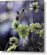 A Meadow's Blur Of Nature Metal Print