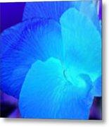 Blurple Flower Metal Print