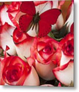 Blush Roses With Red Butterfly Metal Print
