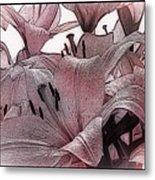 Blushing Lilies Metal Print