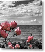 Blustery Summer's Day  Metal Print
