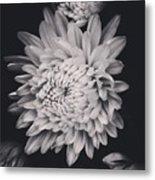 Bnw Flora Metal Print