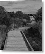 Boardwalk At Talbot Island Metal Print
