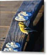 Boardwalk Inspector Metal Print