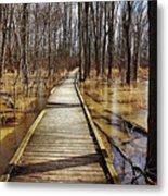 Boardwalk Over Golden Brown Iced Pond Metal Print