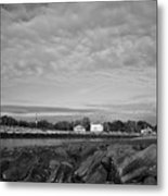 Boat Houses Metal Print