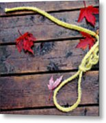 Boaters Chain Metal Print