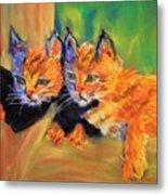 Bobcat Kittens 1 Metal Print