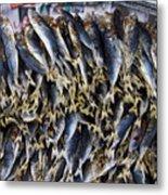 Bodboron Filipino Dried Fish Metal Print