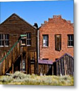 Bodie Siblings Metal Print