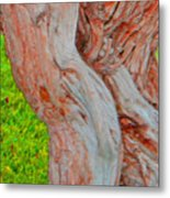Bodies And Muscles Metal Print