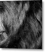 Body Of Hair Metal Print