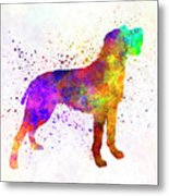 Bohemian Wirehaired Pointing Griffon In Watercolor Metal Print