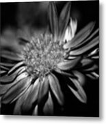 Bold Black And White Flower Metal Print